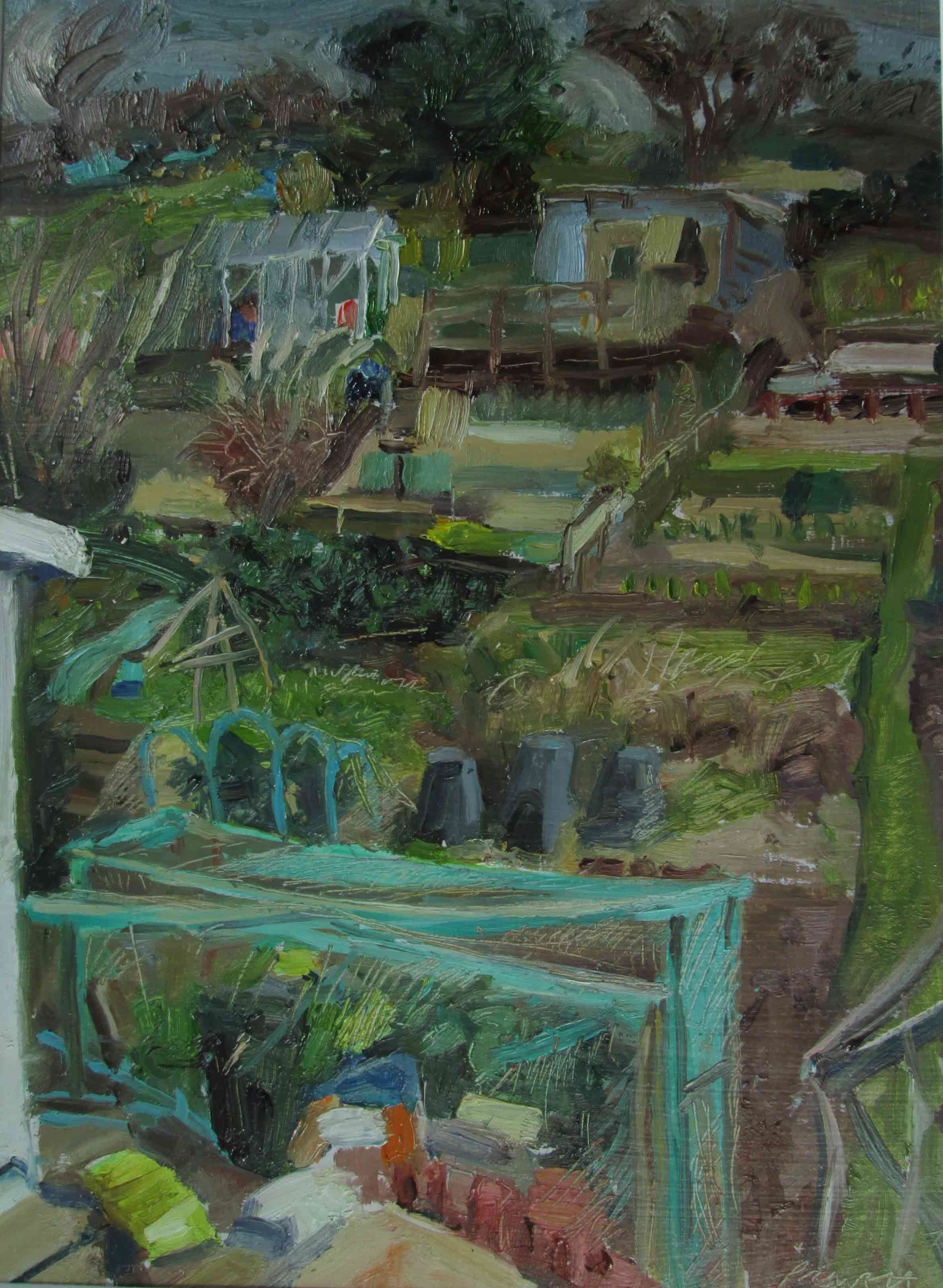 Hollingbury-allotments-3