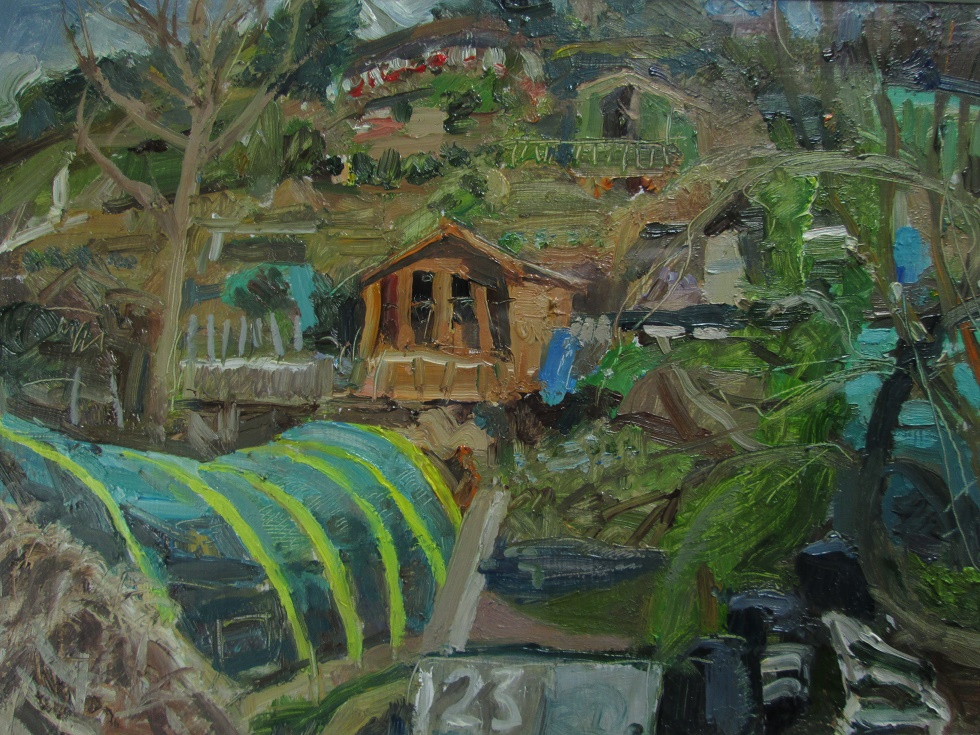 Allotments with cabin  (sold)
